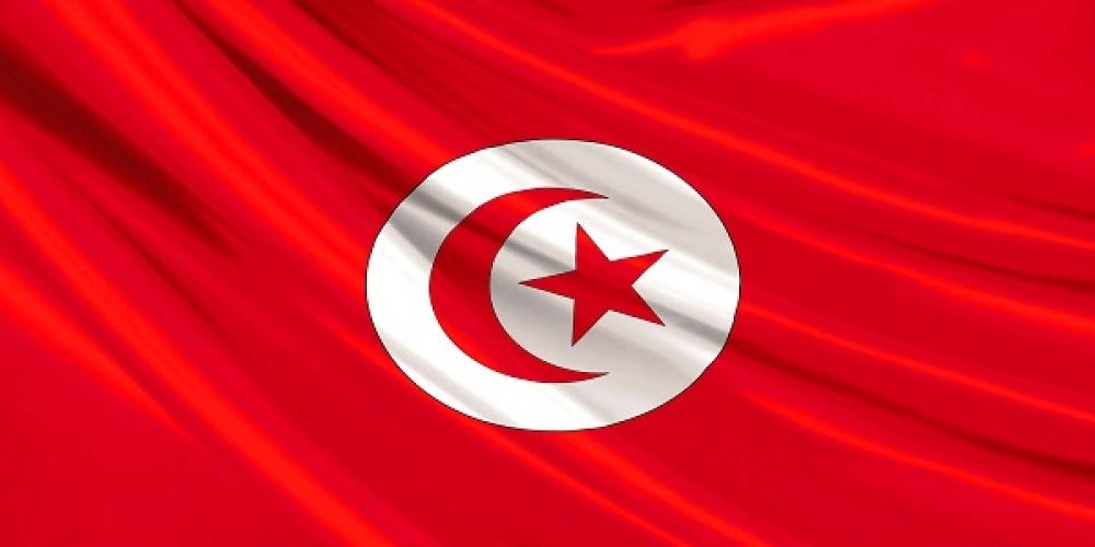 تحلیل نتایج انتخابات پارلمانی تونس