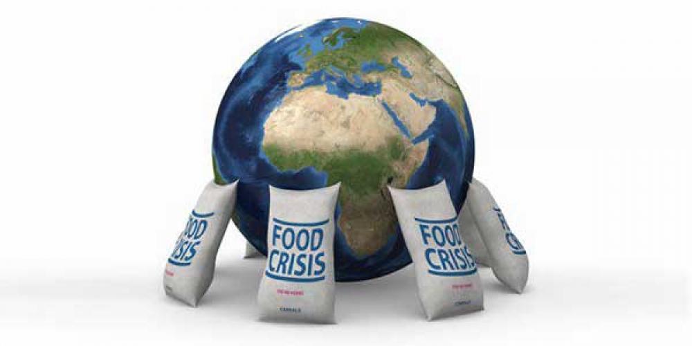 جایگاه امنیت غذایی در تامین امنیت ملی کجاست؟