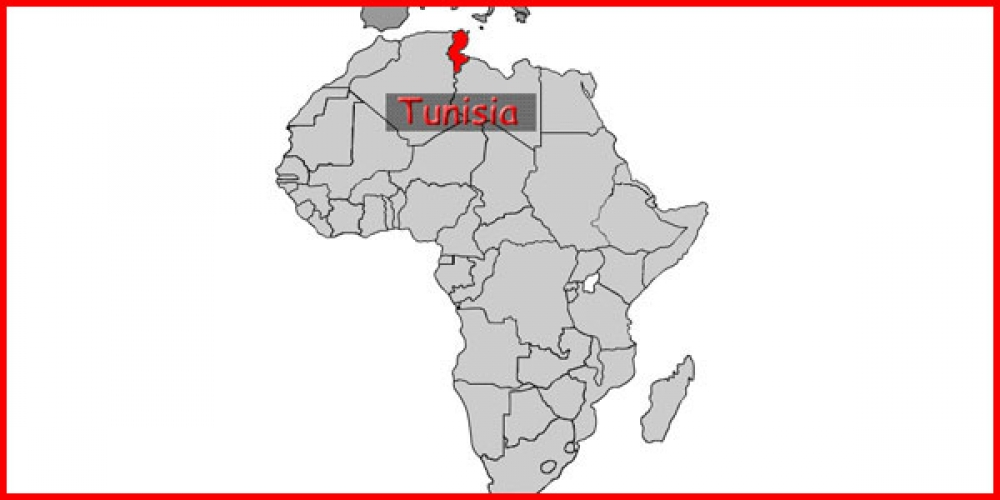 از سرگیری روابط تونس و سوریه؛ دلایل و چالشها
