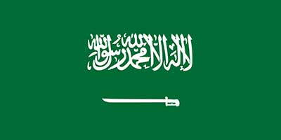 عربستان در سال 95؛ رویدادها و روندها