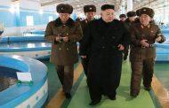 اینستاگرام/ احتمال دبه آمریکا در قبال کره شمالی